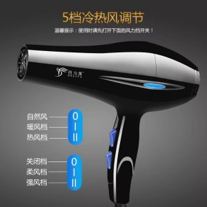 Salon Professional Hair Dryer DLY 2200W Hot & Cold Strong Wind (Ready Stock,Free 1 Nozzle))
